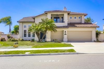 Encinitas Single Family Home For Sale: 202 Pacific View Lane