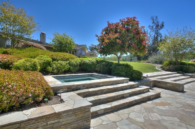 Rancho Santa Fe Single Family Home For Sale: 5004 El Acebo Del Norte