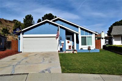 San Diego Single Family Home For Sale: 207 Glen Vista Street