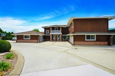 Escondido Single Family Home For Sale: 25298 Jesmond Dene Heights Pl