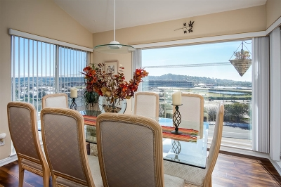Solana Beach Attached For Sale: 227 Turf View Dr