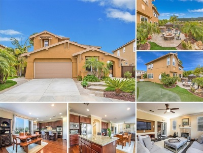 San Marcos Single Family Home For Sale: 1768 Star Crest Place