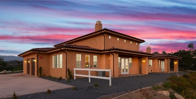 Valley Center Single Family Home For Sale: 30049 Stone Summit Drive