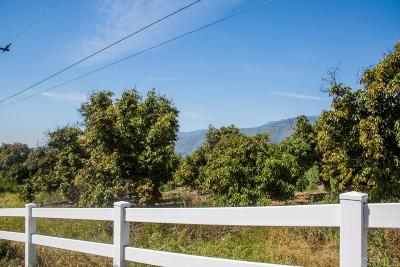 Valley Center Residential Lots & Land For Sale: Pauma Heights Rd # 20