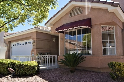 Riverside County Single Family Home For Sale: 26853 Summer Sunshine Dr