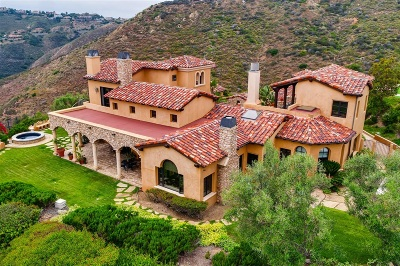 Rancho Santa Fe Single Family Home For Sale: 18113 El Brazo
