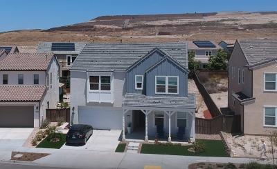 Chula Vista Single Family Home For Sale: 987 Camino Levante
