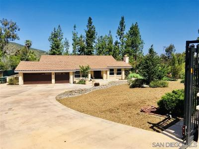 Escondido Single Family Home For Sale: 3437 Lomas Serenas Dr