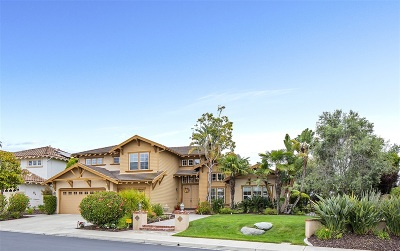 Carlsbad Single Family Home For Sale: 6258 Paseo Elegancia