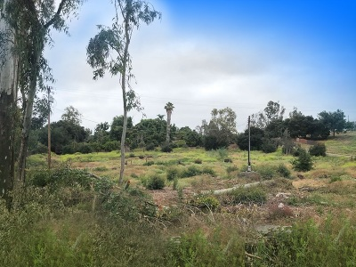 Escondido Residential Lots & Land For Sale: Conway Dr #22414332