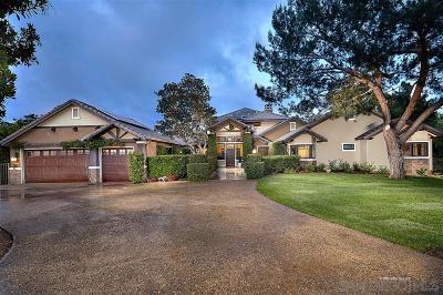 Escondido Single Family Home For Sale: 20461 Fortuna Del Sur