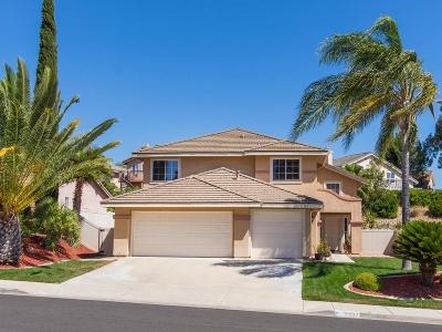 Temecula Single Family Home For Sale: 31537 Via San Carlos