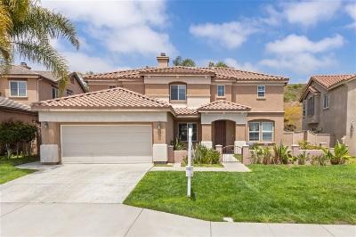 Oceanside Single Family Home For Sale: 3132 Toopal Dr