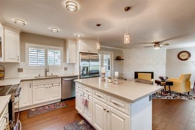 Vista Single Family Home For Sale: 1670 Alta Vista Dr