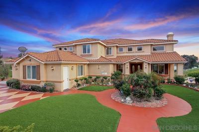 Murrieta, Temecula Single Family Home For Sale: 30975 Via Norte