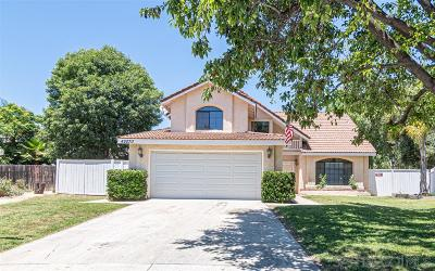 Temecula Single Family Home For Sale: 42070 Paseo Brillante
