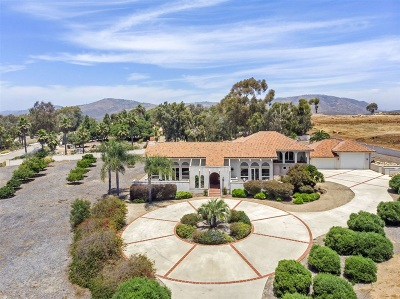 San Diego Single Family Home For Sale: 7984 Artesian Road