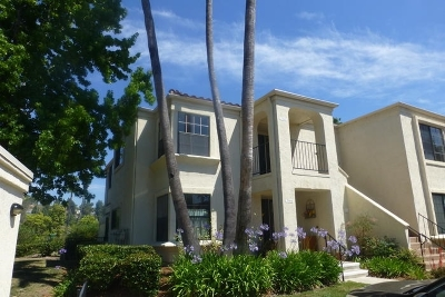 Oceanside,  Carlsbad , Vista, San Marcos, Encinitas, Escondido, Rancho Santa Fe, Cardiff By The Sea, Solana Beach Rental For Rent: 7310 Alta Vista