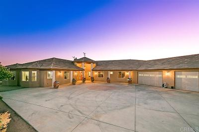 Valley Center Single Family Home For Sale: 29482 Paso Robles
