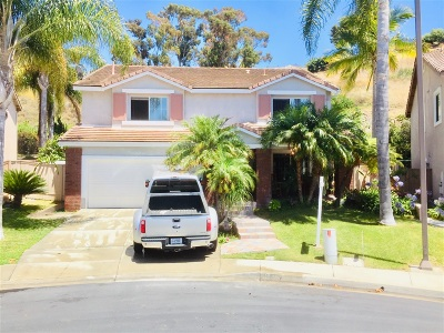 Oceanside Single Family Home For Sale: 306 La Soledad Way