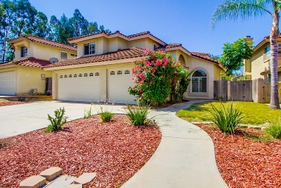 Escondido Single Family Home For Sale: 335 Springtree Pl