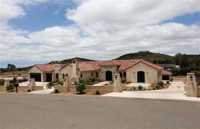 Fallbrook Single Family Home For Sale: 31838 Villa Del Cielo Drive