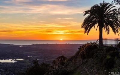 Rancho Santa Fe Single Family Home For Sale: 18019 Punta Del Norte