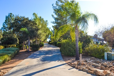 Ramona Single Family Home For Sale: 24713 El Sebo