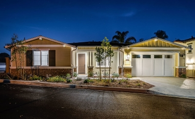 Encinitas Single Family Home For Sale: 1145 Laurel Cove Ln