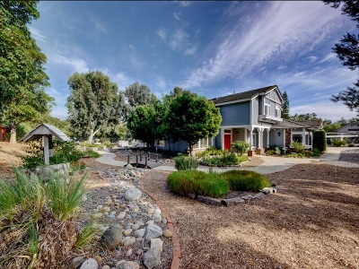Fallbrook Single Family Home For Sale: 1802 Palomares Rd.