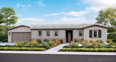 Escondido Single Family Home For Sale: 2872 Livery Way