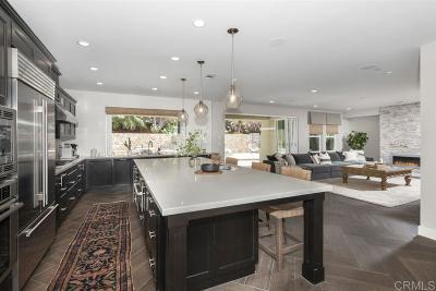 Encinitas Single Family Home For Sale: 1693 Tabletop Way