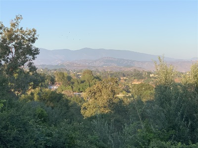 Fallbrook Single Family Home For Sale: 240 Spanish Spur