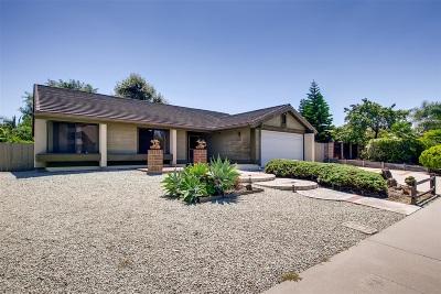 Carlsbad Single Family Home For Sale: 3101 Segovia Way