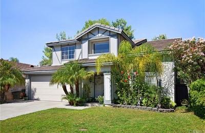 Temecula Single Family Home For Sale: 43187 Camino Caruna