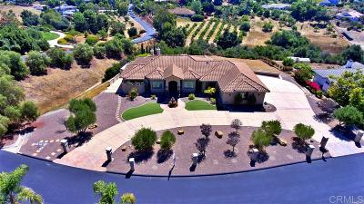Fallbrook Single Family Home For Sale: 3134 Camino Portofino