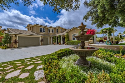 Fallbrook Single Family Home For Sale: 401 Highland Oaks Ln
