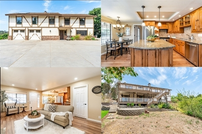 Fallbrook Single Family Home For Sale: 1284 Riverview Dr