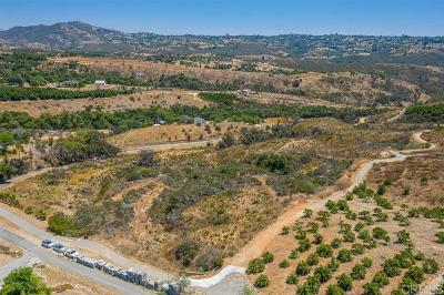 Fallbrook Residential Lots & Land For Sale: Rock Mountain Dr.