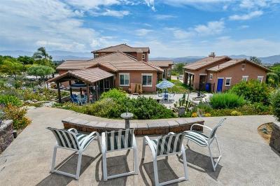 Fallbrook Single Family Home For Sale: 434 Lemonwood Dr