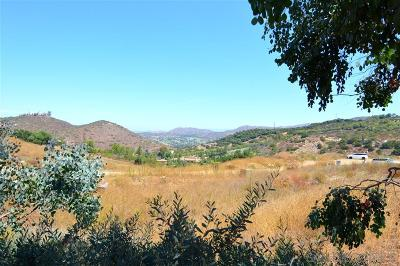 Poway Residential Lots & Land For Sale: 16321 Espola Rd #09-10