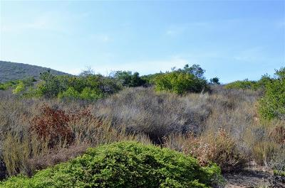 San Marcos Residential Lots & Land For Sale: Del Roy Drive #Parcel 4