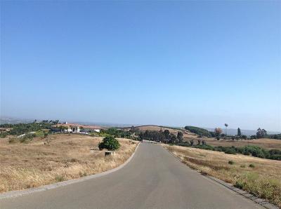 Bonsall Residential Lots & Land For Sale: Lot 1 Villa Del Cielo #1,  2,