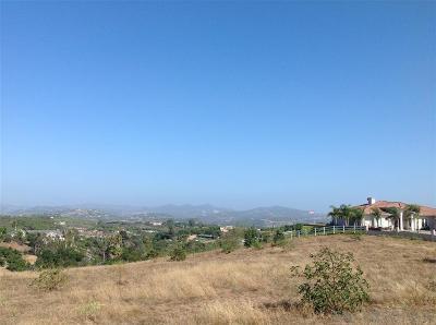 Bonsall Residential Lots & Land For Sale: Lot 3 Villa Del Cielo #3