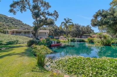 Fallbrook Single Family Home For Sale: 1821 Tecalote Drive