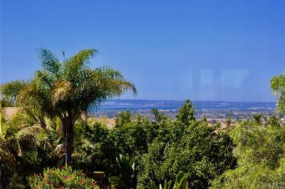 San Diego Single Family Home For Sale: 820 Briarpoint Pl