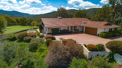 Vista Single Family Home For Sale: 29637 Vista Valley Dr