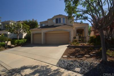 Escondido Single Family Home For Sale: 2213 Canyon View Gln