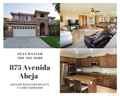 San Marcos Single Family Home For Sale: 875 Avenida Abeja