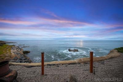 San Diego Multi Family 2-4 For Sale: 1466-74 Pescadero Dr